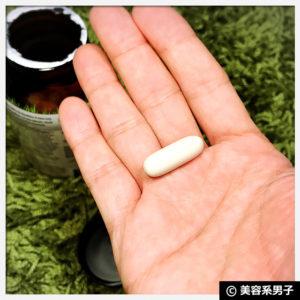 【整腸】ヘルシートラクト・プロバイオティックプラス【体験開始】
