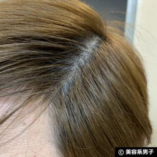 【白髪用ファンデ】クイックカモフラージュヘアカラーを使ってみた。-09