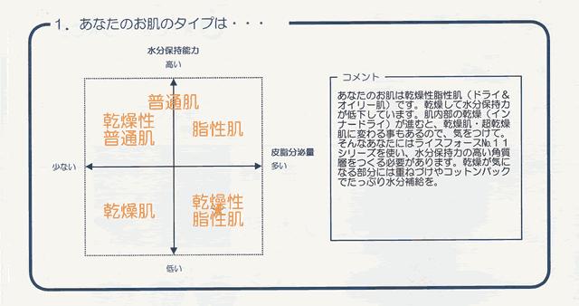【体験30日目】ライスフォース「お肌分析」キメは復活するの?効果-01