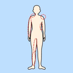 【筋膜リリース】フォームローラーと合わせて筋トレ効果を上げる方法-07