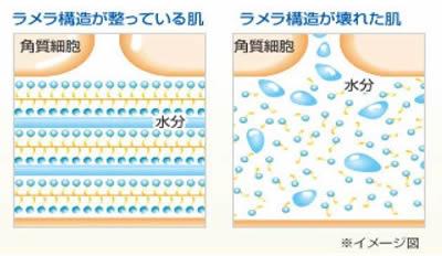【保湿】ヘパリン類似物質「ヘパソフト 薬用顔ローション」口コミ-05