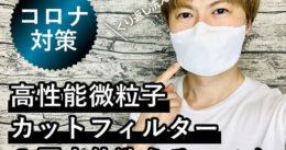 【コロナ対策】高性能微粒子カットフィルター3層立体洗えるマスク