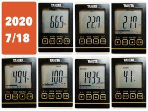 【10ヶ月目】筋トレ初心者ダイエット 数値と体系の変化-01