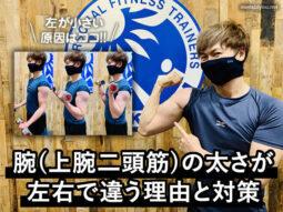 【初心者必見】腕(上腕二頭筋)の太さが左右で違う理由と対策-筋トレ-00
