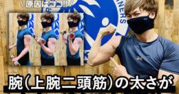 【初心者必見】腕(上腕二頭筋)の太さが左右で違う理由と対策-筋トレ