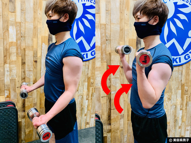 【初心者必見】腕(上腕二頭筋)の太さが左右で違う理由と対策-筋トレ02